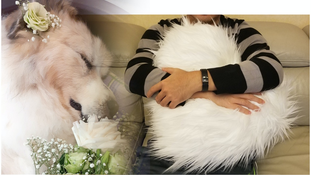 Heart Urns: Soft cremation urn pillow for pets