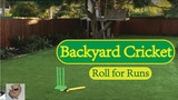 Backyard Cricket (Roll for Runs) thumbnail