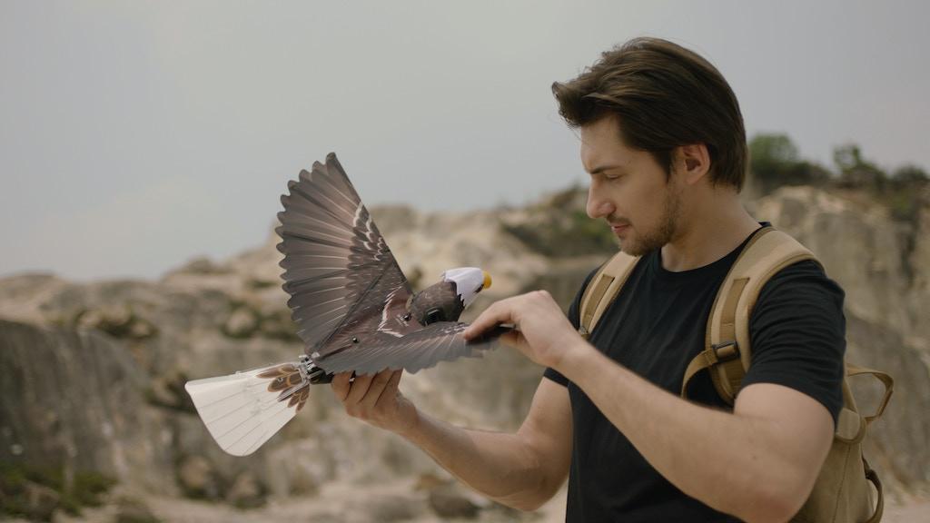 Go Go Bird: Take Your Dreams To The Sky by Gogobird — Kickstarter