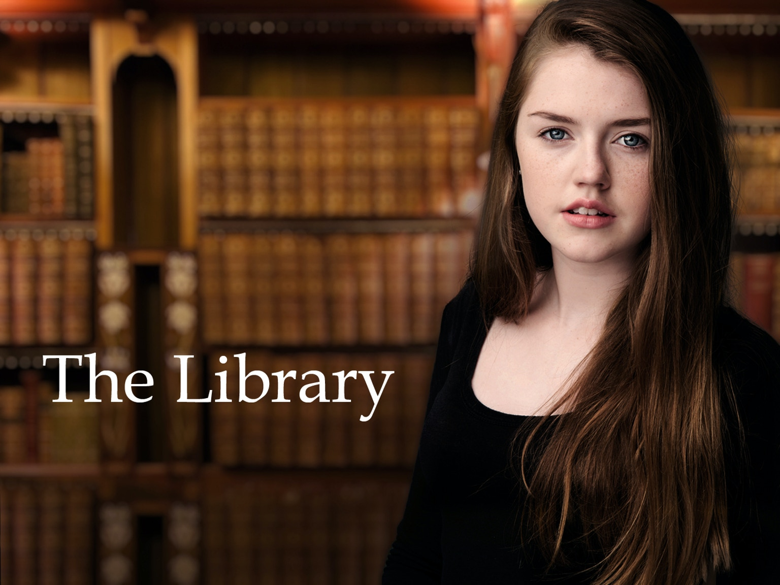 The Library (dirigida por Jason LaMotte, 2015)