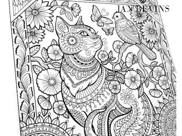 Coloring Book For Adults Large Spiral Bound By Jan