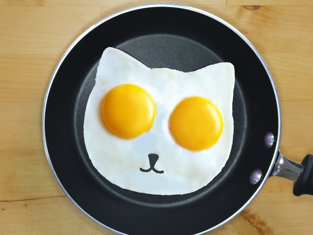 Sunny Side Up Eggs Cat Fried Egg Mold Project Video
