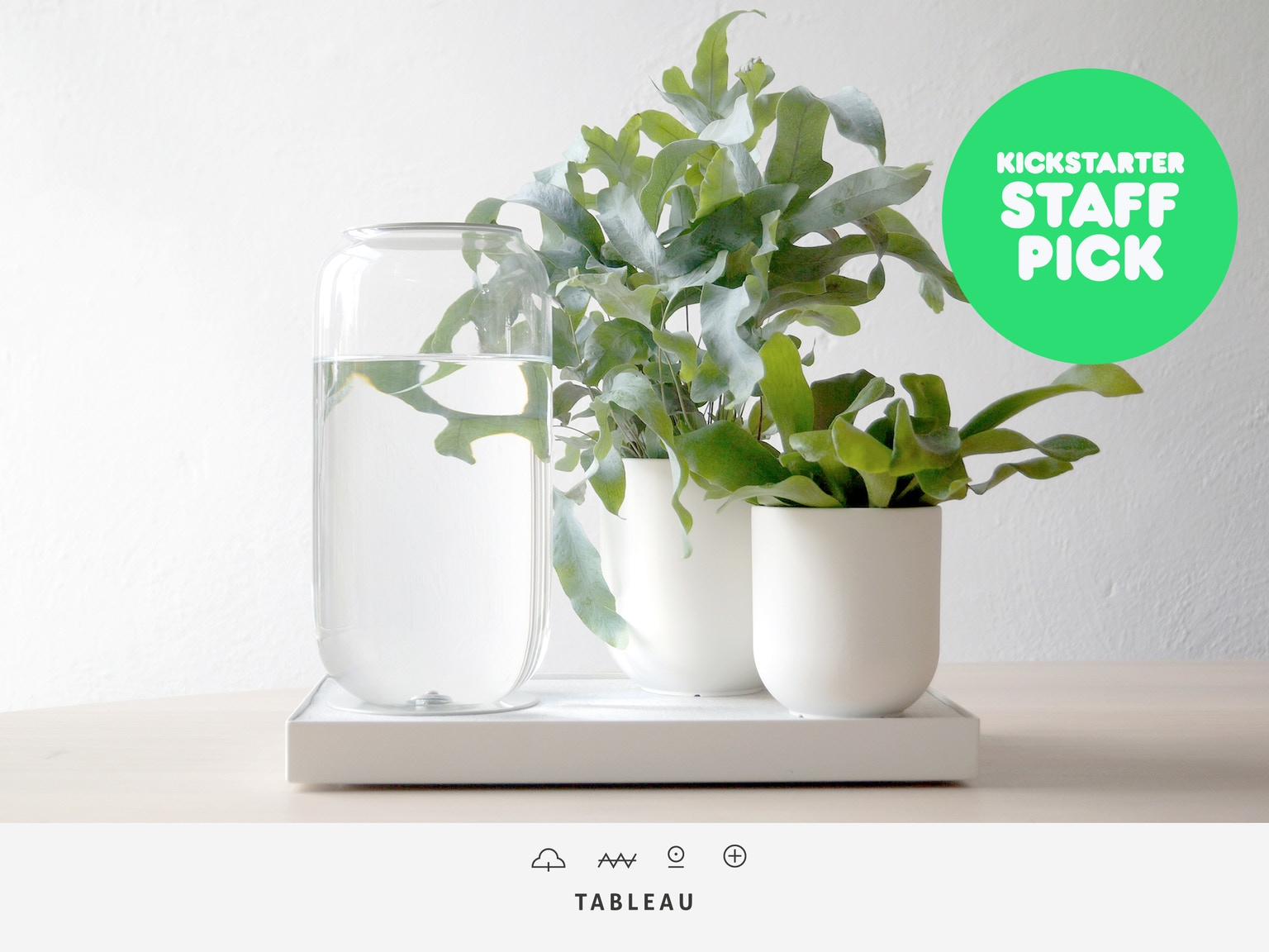 tableau automatic house plant watering tray by pikaplant. Black Bedroom Furniture Sets. Home Design Ideas